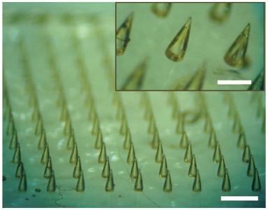 microneedle mat