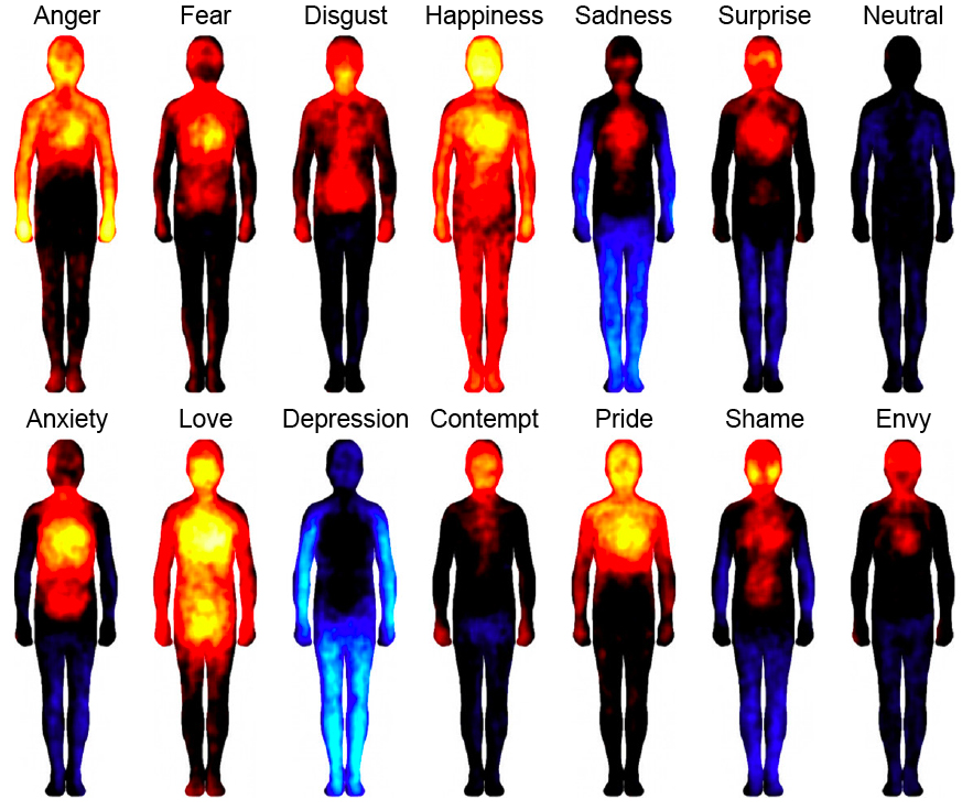 Where in the body do our emotions lie? | mmmbitesizescience